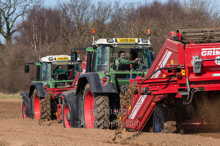 Grimme destoners destoning potato land - Norfolk, March