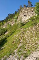 Muschelkalkfelsen, Muschelkalk-Felsen, Kalkfelsen, Trockenhang, Trockenhänge, Steilhang, Steilhänge, Trockenbiotop, Naturschutzgebiet, Jonastal, Thüringer Jonastal, Thüringen, Deitschland, steep rock slope, escarpment, shell limestone, Germany