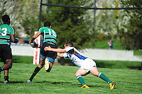The Pleasanton Cavaliers Rugby Club Varsity action during the 2013 Saeson. (Photo by Alan Greth /AGP Photography),
