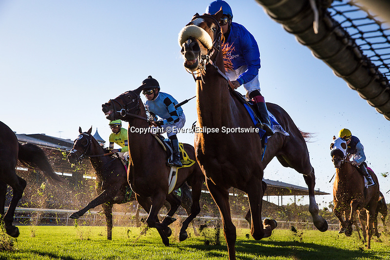 December 26, 2015: Crittenden with Martin Garcia up race for position in the Mathis Brothers Mile Stakes at Santa Anita Park, Arcadia CA. Evers/ESW/CSM