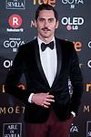 Paco Leon attends red carpet of Goya Cinema Awards 2018 at Madrid Marriott Auditorium in Madrid , Spain. February 03, 2018. (ALTERPHOTOS/Borja B.Hojas)