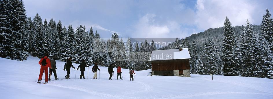Europe/France/Rhône-Alpes/74/Haute Savoie/Env de Morzine: Promenade en raquettes avec Hervé le Guide