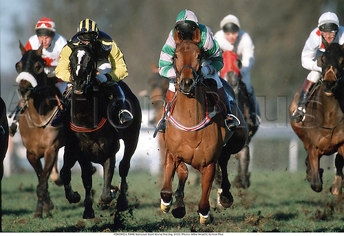 FONTWELL PARK National Hunt Horse Racing, 9102. Photo: Mike Hewitt/Action Plus...1991.