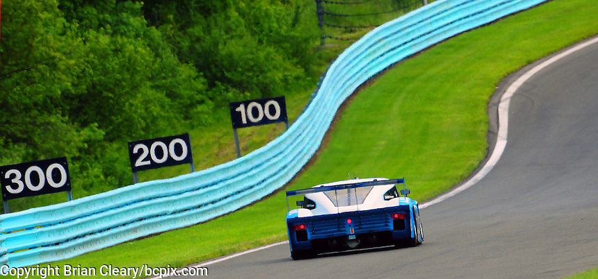 The #01 BMW Riley of Memo Rojas and Scott Pruett races up a starightaway during the Sahlen's Six Hours at Watkins Glen, June 4, 2011.  (Photo by Brian Cleary/www.bcpix.com)