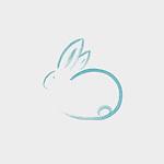 Cute little bunny rabbit artistic oriental Zen style illustration design, based on an original sumi-e artwork, blue on light off-white gray background