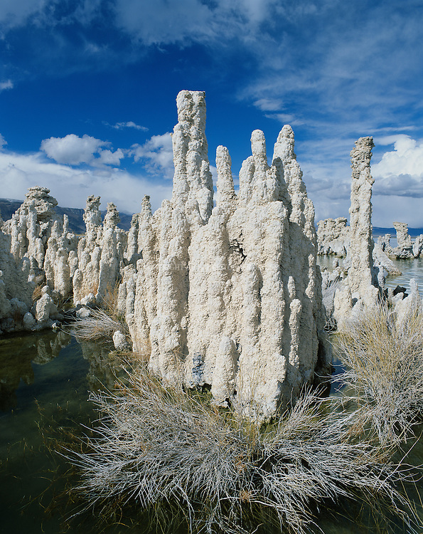 """Mono Lake, a large, shallow terminal (no outlet) saline lake formed at least 760,000 years ago. Diversion of water inflows by Los Angeles beginning in 1920's lowered lake levels 30% by 1982, exposing previously submerged calcium carbonate tufa formations and threatening vital migratory bird resting area and food sources. Nearly 2,000,000 waterbirds, including 35 species of shorebirds, use Mono Lake to rest and eat for at least part of the year including second largest nesting population of California gulls. Name  """"Mono"""" from """"Monachi"""", a Yokut term for the tribes that lived on both the east and west side of the Sierra Nevada. Mono County, CA."""