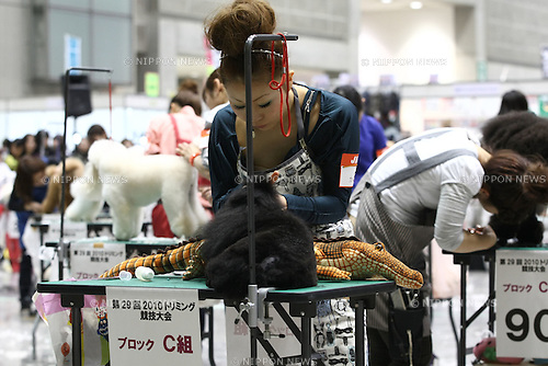 Apr. 3, 2010 - Tokyo, Japan - Dogs get a trim during the Japan International Dog Show 2010 at Tokyo Big Sight on April 3, 2010 in Tokyo, Japan.