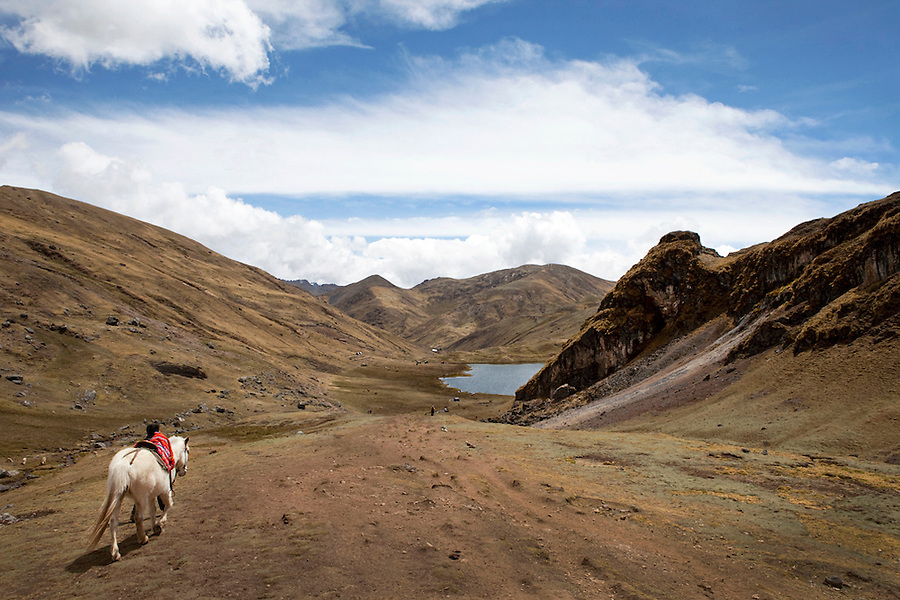 A boy walks a white horse in the Andes of Lares, Peru at 15,000feet