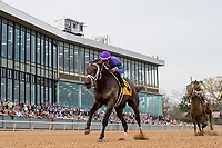 HOT SPRINGS, AR - MARCH 17: #4 Magnum Moon with jockey Luis Saez. Rebel Stakes at Oaklawn Park on March 17, 2018 in Hot Springs, Arkansas. (Photo by Ted McClenning/Eclipse Sportswire/Getty Images)