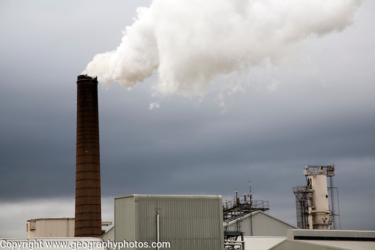 Steam rising from chimneys as sugar beet is processed at the British Sugar factory, Bury St Edmunds, Suffolk, England