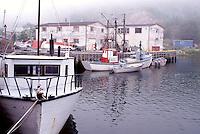 Newfoundland, NF, St. John's, Canada, Quidi Vidi Village a 17th century fishing village in St. John's in the fog. Atlantic Ocean