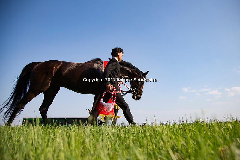 FUCHU,JAPAN-MAY 28: Rey de Oro,ridden by Christophe Lemaire, after winning the Japanese Derby at Tokyo Racecourse on May 28,2017 in Fuchu,Tokyo,Japan (Photo by Kaz Ishida/Eclipse Sportswire/Getty Images)