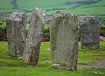 County Cork,Ireland: Standing stones of the Drombeg stone circle (akd Druid's Altar) dating from 1100-800 BC among the patchwork hillside near Glandore