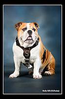 Bully TaTonka in studio (photo by Russ Houston / © Mississippi State University)