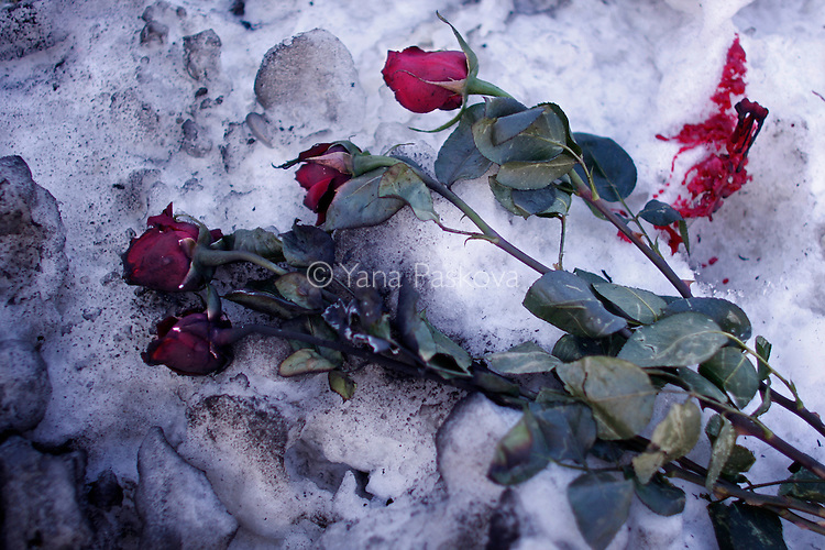 Burnt roses and candle wax lay in the snow near the signatures, crosses, candles and flowers multiplying across campus in honor of the memory of the five victims at Northern Illinois University in DeKalb, Illinois, on Saturday, February 16, 2008, from the 27-year-old Stephen Kazmierczak's gun-shooting rampage that killed 5 people and injured 16 others that Thursday, February 14, 2008. (Photo by: Yana Paskova for The New York Times)..Assignment ID: 30057318A.