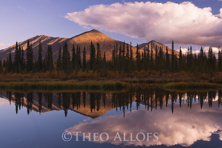 Reflection of Ogilvie Mountains in small lake, northern Yukon, Canada