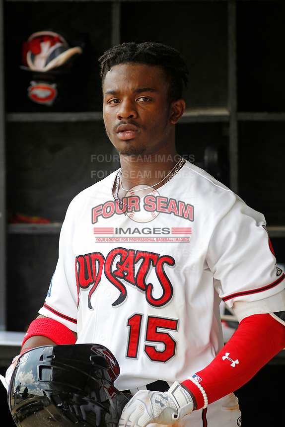 Carolina Mudcats outfielder Troy Stokes Jr. (15) in the dugout during a game against the Down East Wood Ducks on April 27, 2017 at Five County Stadium in Zebulon, North Carolina. Carolina defeated Down East 9-7. (Robert Gurganus/Four Seam Images)