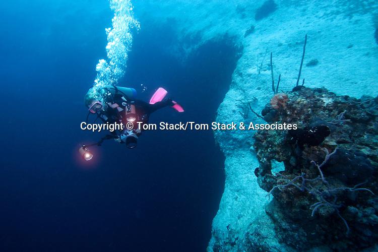 Descending into Lost Ocean Blue Hole, Bahama Islands