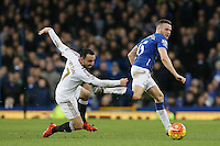 Leon Britton competes with Tom Cleverley during the Barclays Premier League match between Everton and Swansea City played at Goodison Park, Liverpool