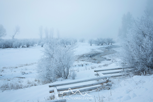 Idaho, Cascade. A creek and fence run through a snowy, misty landscape scene.