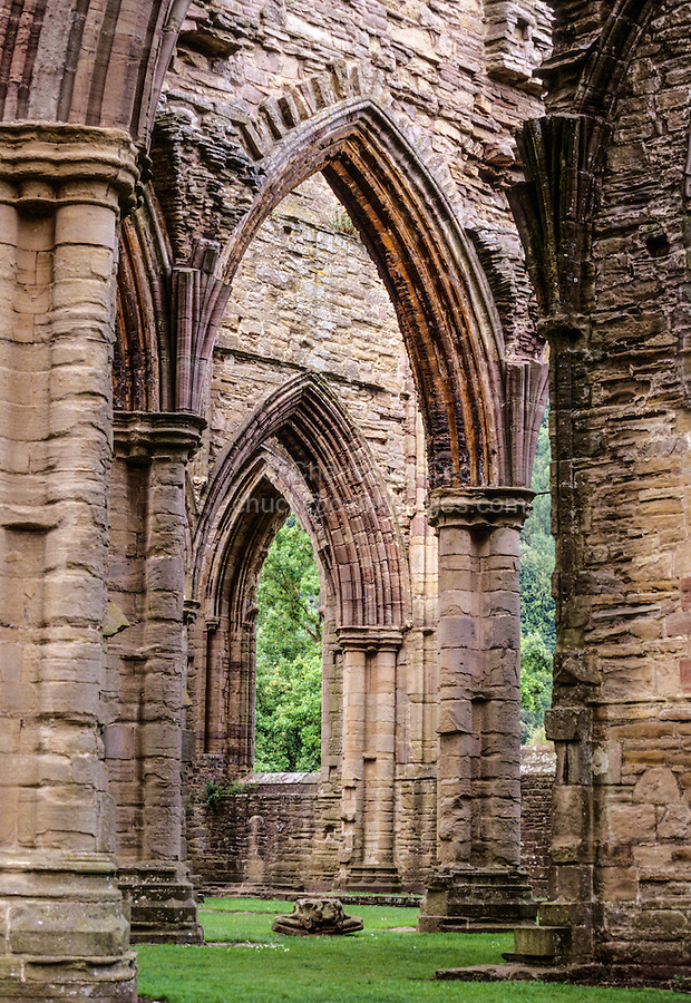 Wales.  Remnants of  Tintern Abbey, a 12th-century Cistercian abbey, founded 1131.