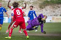 Whitehawk FC (1) vs St Albans City FC (1) 15.04.17