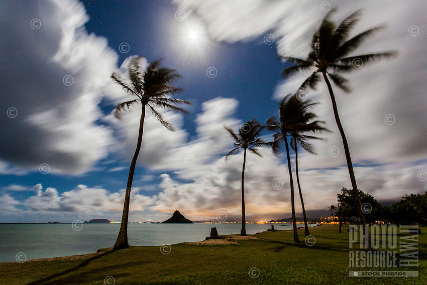 A long-exposure image of the full moon over Mokoli'i (a.k.a. Chinaman's Hat) with palm trees in the foreground at Kualoa Regional Park, O'ahu.