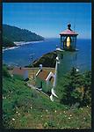 FB 104  Heceta Head Lighthouse