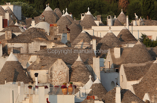 Trulli houses made from dry stone (with no mortar), with white-washed limestone walls and conical roofs, in Alberobello, Bari, Puglia, Southern Italy. The area was first settled in the 16th century, and the feudal lord, Count Acquaviva, encouraged his peasants to build trulli to avoid taxes. Alberobello is listed as a UNESCO World Heritage Site. Picture by Manuel Cohen