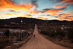 BAJA CALIFORNIA - NOVEMBER 26, 2013:  Sunrise over the Valle de Guadalupe, Mexico's wine region. Residents and wineries in Mexico's wine country are protesting the mayor's relaxing of zoning regulations they say will lead to a drastic change in the culture of  the popular tourist destination.  CREDIT: Max Whittaker for The New York Times
