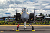 F-15 Eagle of the 173rd Fighter Wing based at Kingsley Field in Klamath Falls in a commemerative paint scheme to celebrate the Oregon Air National Guard's 75th anniversary.
