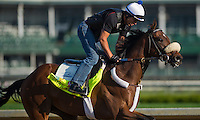 Java's War, trained by Ken McPeek, during morning workouts for the Kentucky Derby at Churchill Downs in Louisville, Kentucky on April 30, 2013.