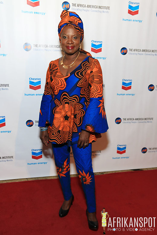 Angelique Kidjo - The Africa-America Institute 2016 Annual Awards Gala