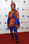 Africa-America Institute 2016 Annual Awards Gala - Red Carpet