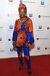 Africa-America Institute 2016 Annual Awards Gala - Red Carpet
