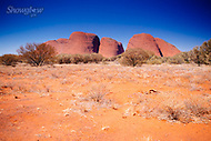 Image Ref: CA654<br />