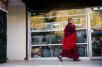 Monk on cell phone walking in street.