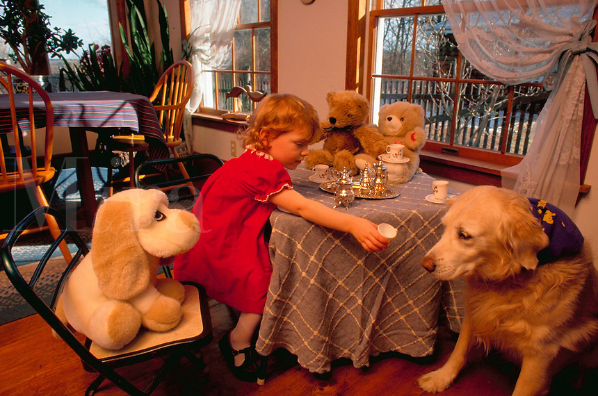 A young girl has a tea party with a Golden Retriever dog and stuffed animal toy.
