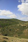Israel, Lower Galilee. A view of Mount Atzmon from Tel Yodfat