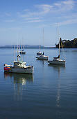 Moored boats in the Mangonui Harbour with the Karikari Peninsula visible past the harbour entrance & Osprey Head right