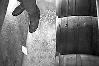 Cutrofiano (Le) - Cantine Aperte 2010 - Visita alle Cantine Palamà: botti conservate nel seminterrato