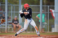 Ball State Cardinals second baseman Noah Navarro (8) bats during a game against the Saint Joseph's Hawks on March 9, 2019 at North Charlotte Regional Park in Port Charlotte, Florida.  Ball State defeated Saint Joseph's 7-5.  (Mike Janes/Four Seam Images)