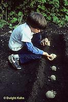 HS05-014z  Potato - child planting potatoes, red pontiac  variety