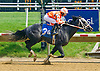 Fleetwood Star winning at Delaware Park on 5/20/15