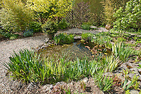 Mature landscaped garden pond in the spring sunshine, Uk
