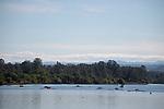 SaintMarys 1718 Rowing