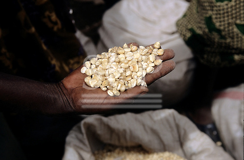 Lolgorian, Kenya. Man's hand with maize on sale at the market.