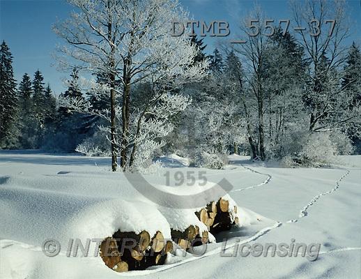 Gerhard, CHRISTMAS LANDSCAPE, photos, BY.Im Alpenvorland bei Frasdorf(DTMB557-37,#XL#) Landschaften, Weihnachten, paisajes, Navidad