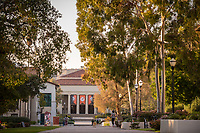 View of the Occidental College campus looking towards Thorne Hall along the Academic Quad walkway, March 28, 2018.<br /> (Photo by Marc Campos, Occidental College Photographer)