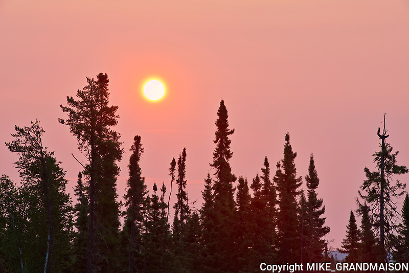 Boreal forest at sunrise at Lac Seul<br />